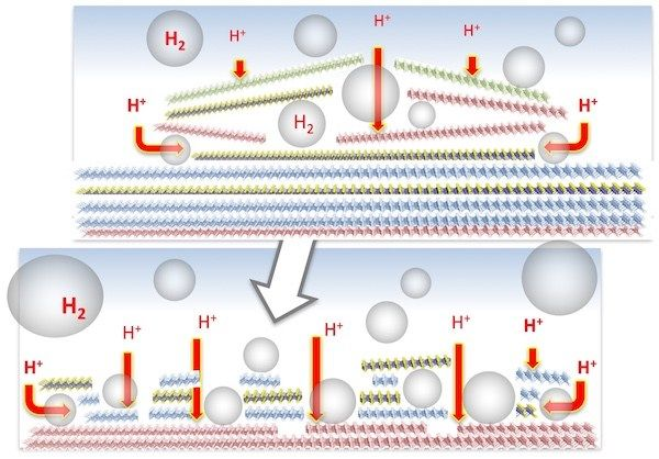 Scientists at Rice University and the Lawrence Livermore National Laboratory have predicted and created new two-dimensional electrocatalysts to extract hydrogen from water with high performance and low cost. In the process, they also created a simple model to screen materials for catalytic...
