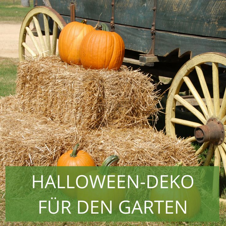 38 besten halloween deko f r den garten bilder auf pinterest kost me halloween prop und. Black Bedroom Furniture Sets. Home Design Ideas