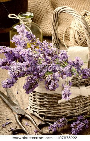 Bunch of freshly cut lavender in a basket by Symbiot, via Shutterstock