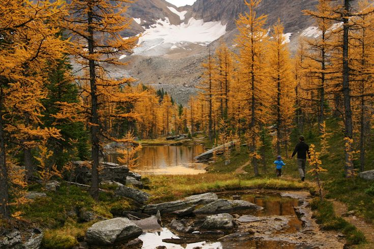 Family Adventures in the Canadian Rockies - Fall hikes