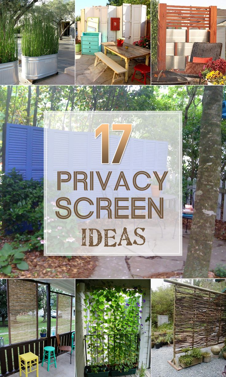 Easy and creative ways to create more privacy in your backyard or on your deck.