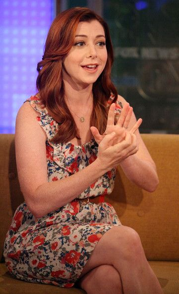 Alyson Hannigan Long Wavy Cut - Alyson Hannigan Hair - StyleBistro