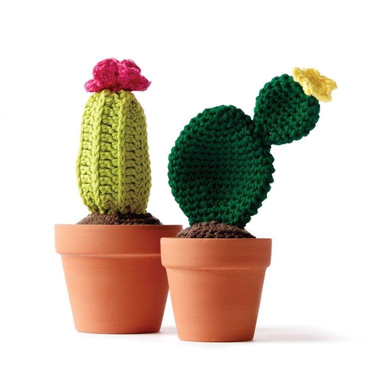 Crochet cacti - cute crochet - Sugar and cream yarn - crochet decor