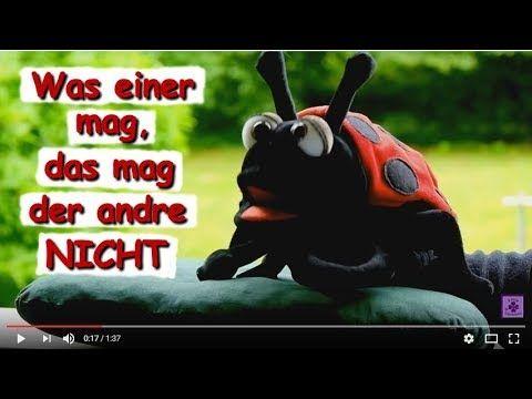 Was einer mag, das mag der andre NICHT ☍ Gedicht mit Musik, gesprochen von Käfer Maus  #Unterschiede #Sichtweisen #Perspektiven #Vorlieben  #Regen #Pflanzenwelt #Pflanzen #reisen #Fernreisen #derMensch #Mensch  #Umwelt #Verkehr #Garten #Gift #Pflanzenschutz #Pflanzenschutzmittel #Blattläuse #Läuse #Marienkäfer #Lieblingsspeise #ungespritzt  #sprechenderMarienkäfer  #lustigeGedichte #lustigesGedicht #Gedicht #Gedichte #Lyrik #Poesie #Verse #Reime #Lyrics #Sprüche #Video #Videos…