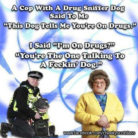 mrs browns boys quotes - Google Search                              …