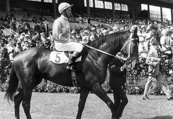 1968 - Rain Lover equals Archer's Melbourne Cup winning margin record by eight lengths.