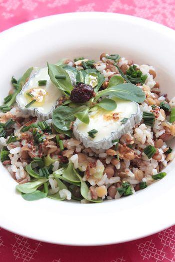 Salade de riz aux lentilles blondes, cranberries et noix