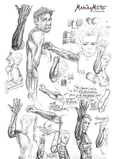 Anatomy Studies of the arm, upper body, knees and legs  / Dibujos anatómicos del brazo, tren superior, rodillas y pierna.