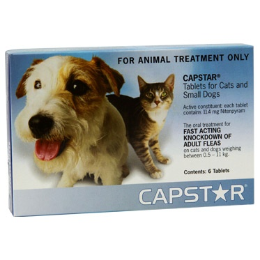 Capstar flea treatment program for cats and dogs is used for the rapid relief of flea infestations. Capstar provides cats and dogs with effective flea control, killing fleas within 30 minutes of administering the medication. Adult fleas begin to perish within 30 minutes following use, and 100% of adult fleas will be dead within seven hours, leaving your dog or cat flea-free and comfortable. http://www.canadavetcare.com/capstar-for-dogs/flea-and-tick-control-treatment-61.aspx