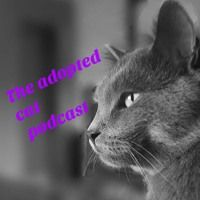 The Adopted Cat - Episode 6 by The_Adopted_Cat on SoundCloud  #cat #dog #animalawareness #freetogoodhome