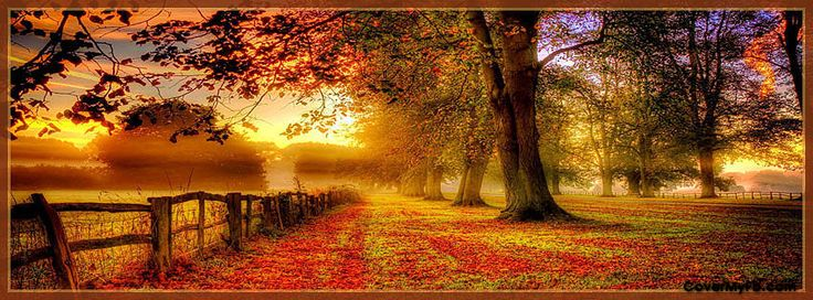 Fall autumn facebook covers fall autumn fb covers - Nature cover pages for facebook ...