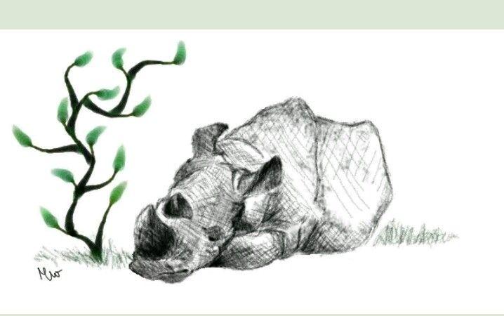 https://www.instagram.com/drawing.deer/  http://mesitka12.deviantart.com/
