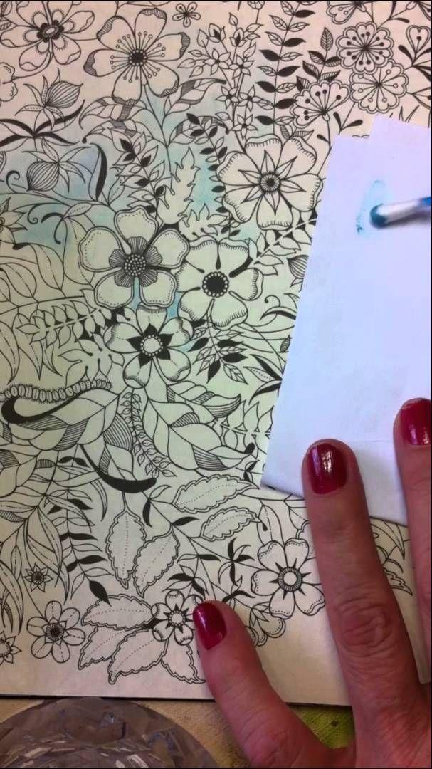 Usando Chalk No Livro Jardim Secreto