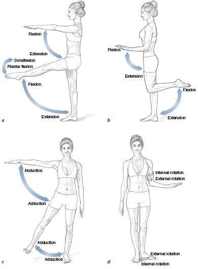 Pin on Effective Hip Flexor Stretch