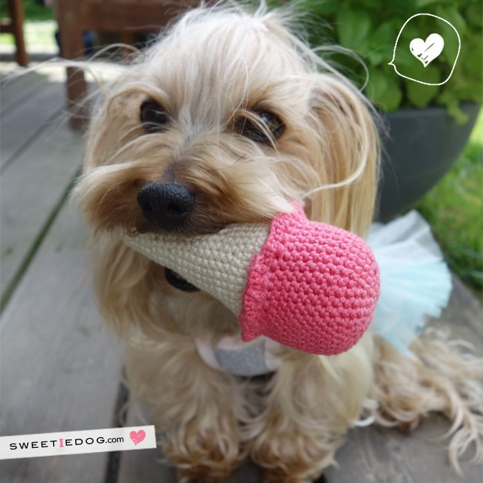 Dog toy ice cream strawberry www.sweetiedog.com #dog #yorkshire #dogtoy #chien #jouetchien #dogaccessories #icecream
