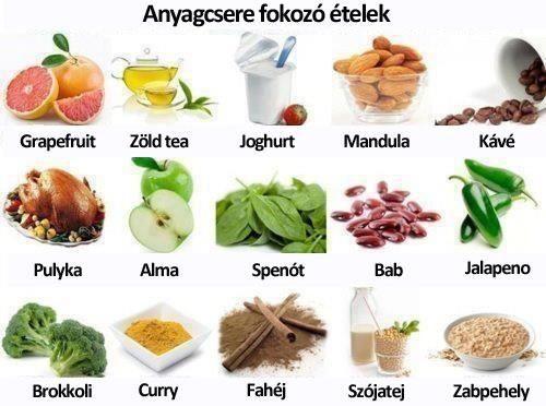 Melyek a legjobb anyagcsere fokozó ételek?