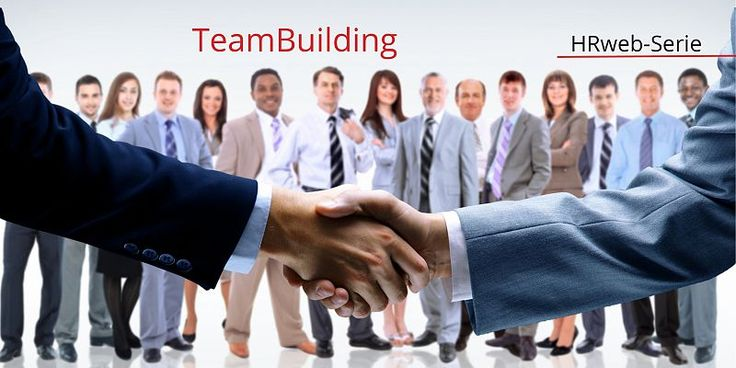 Teambuilding-Spiele: was wurde aus den Seminar-Pferden? - HRweb