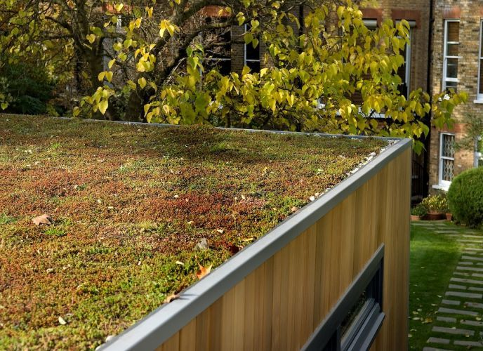 Sedum planted green roof