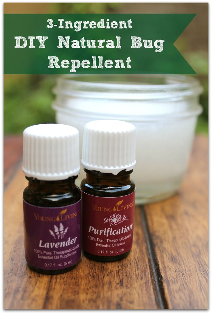 3- Ingredient DIY Natural Bug Repellent Recipe - Healy Eats Real #DIY #natural #homemade #bugs #insects #repellant #bugrepellent