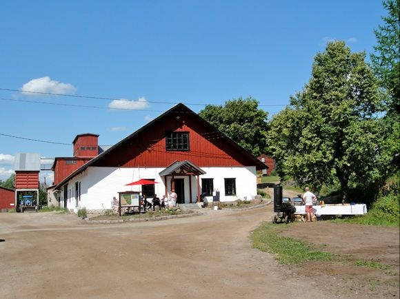 Bosgård Manor, local farm with ecologic cattle and a nice café and shop.