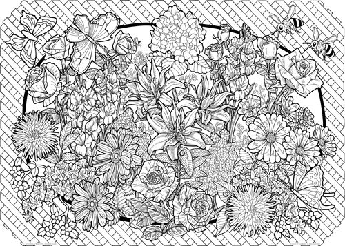 78 images about ADULT COLORING