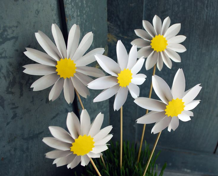 Daisies Origami And Google On Pinterest