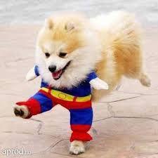 Superman szolgálatra készen áll!