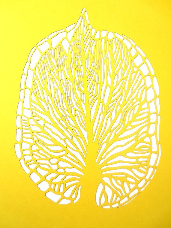 Laser Cut Leaf Vein Poster in Yellow by CuriousDoodles on Etsy