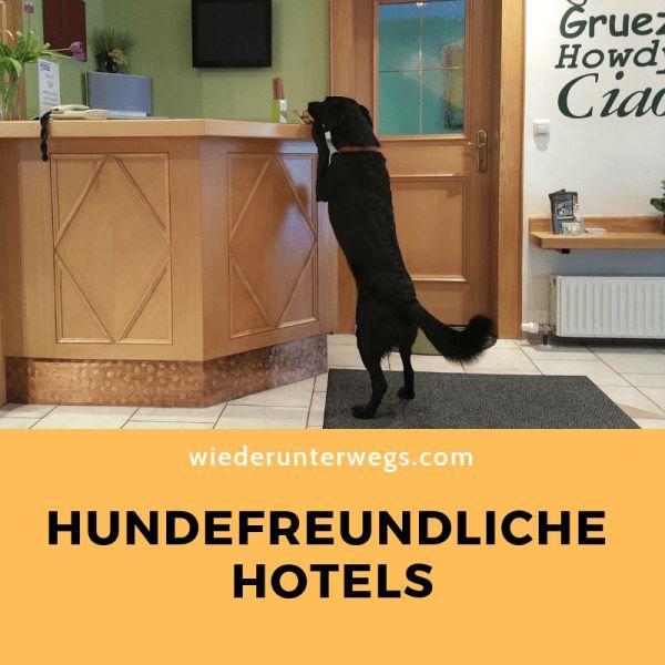 Hundefreundliche Hotels Die Wir Schon Getestet Haben Coffeeunterwegs In Osterreich Und Europa Urlaub Mit Hund Hunde Ausflug