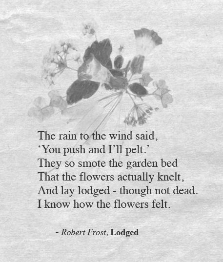 I know how the flowers felt - Robert Frost