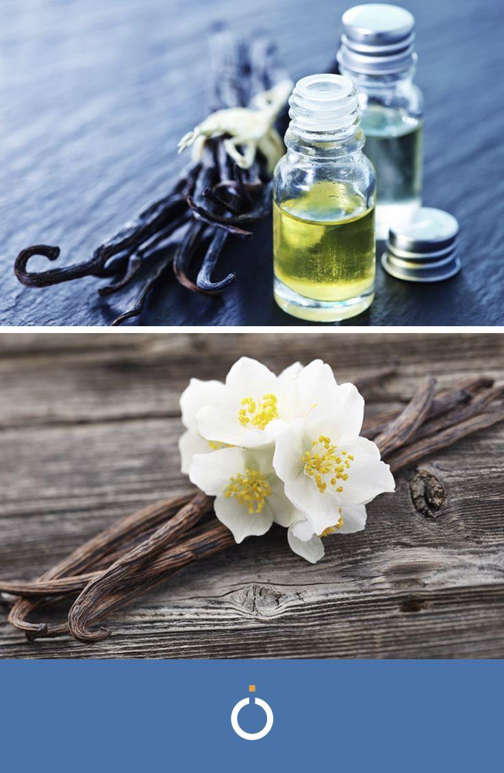 Oli Essenziali Fai Da Te.Come Fare L Olio Essenziale Di Vaniglia Aromaterapia Oli