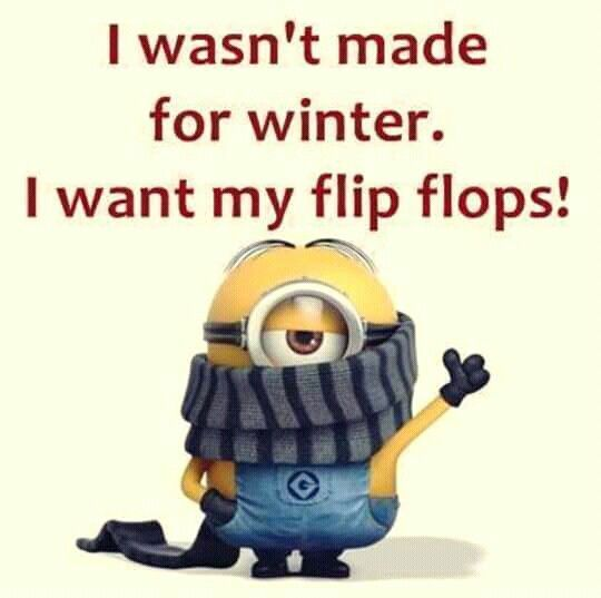 37 Hilarious Minion Memes and Pictures #funnyminions #minionquotes #minionparents #minionpics #minionpictures