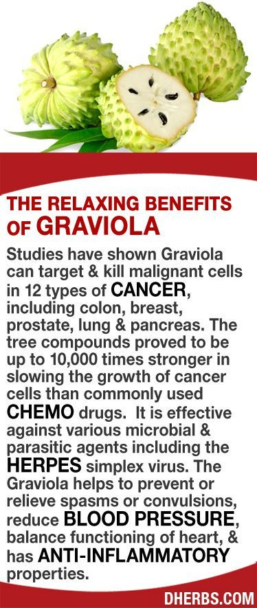 Studies have shown Graviola can target & kill malignant cells in 12 types of cancer, including colon, breast, prostate, lung & pancreas. The tree compounds proved to be up to 10,000X stronger in slowing the growth of cancer cells than common chemo drugs.  It is effective against various microbial & parasitic agents including the Herpes simplex virus. It helps prevent or relieve spasms or convulsions, reduce blood pressure, balance functioning of heart, & has anti-inflammatory properties…
