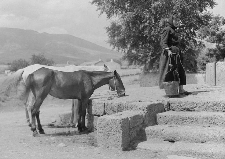 Walter Hege Ελλάδα 1928-1935,