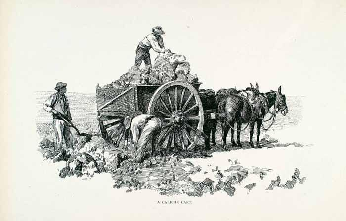 1891 Wood Engraving Caliche Cart Salitre Sodium Nitrate Horses Workers - Period Paper