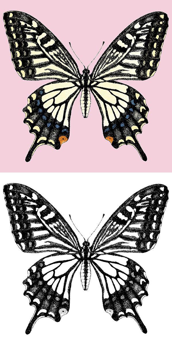 アゲハ蝶 #イラストレーション, #イラスト, #蝶, #illustration, #illust, #butterfly, #farfalla