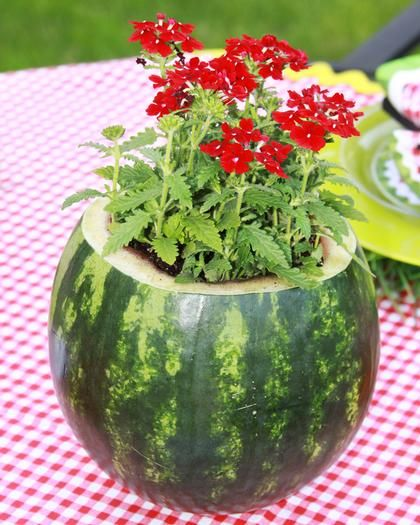 Watermelon flower pot