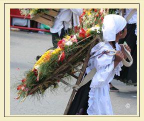 Desfile de silleteros. COLOMBIA-Costumbre familiar donde los pequeños aprenden de sus padres y sueñan con poder desfilar cargando el bello tesoro que les da la tierra sobre sus espaldas.