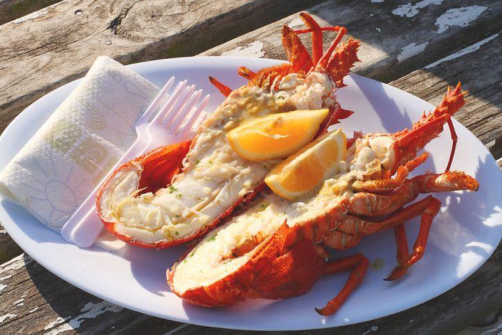 Crayfish in New Zealand