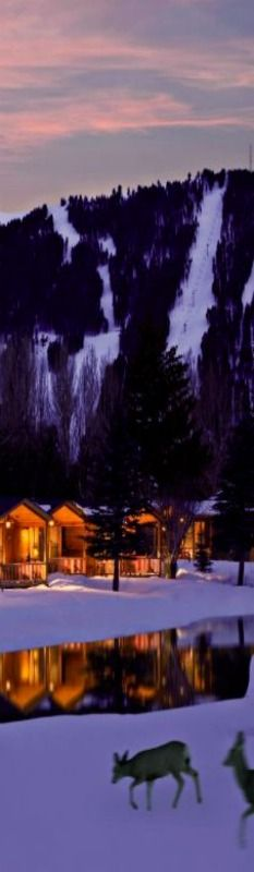 Daily Moment of Zen: Rustic Inn in Jackson Hole, Wyoming