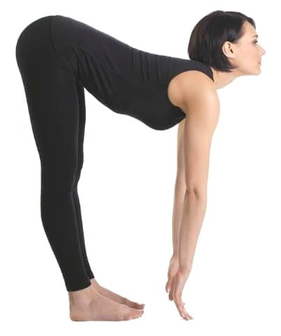 how to get a flexible back in one day  beginner yoga