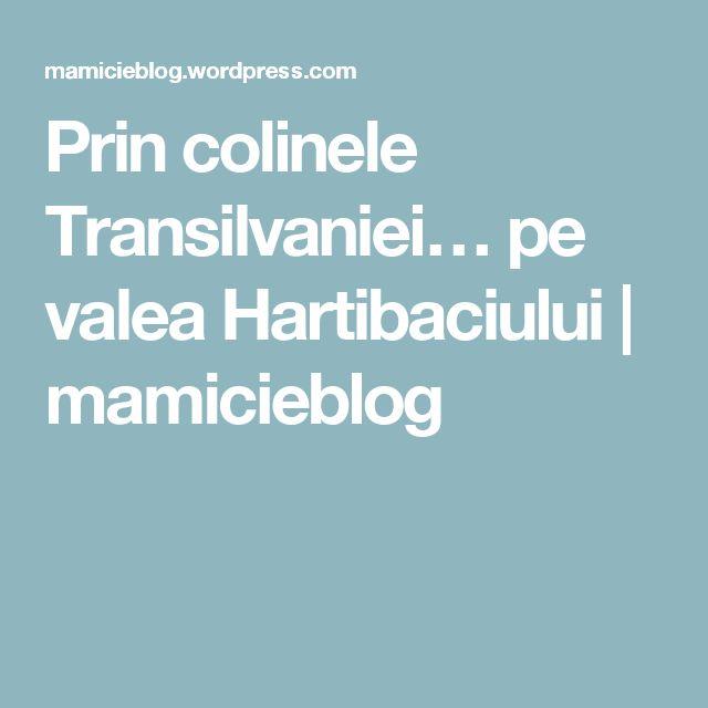 Prin colinele Transilvaniei… pe valea Hartibaciului | mamicieblog