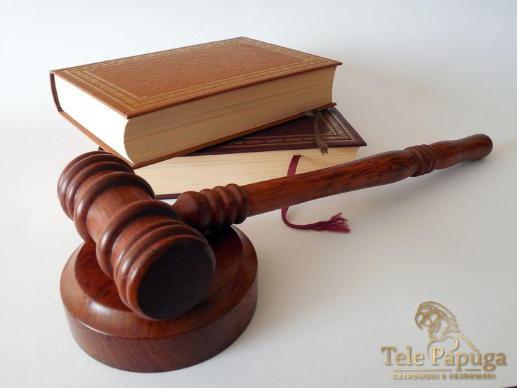 TelePapuga to telefoniczne pogotowie prawne, które daje Ci możliwość skorzystania z wysokiej jakości pomocy prawnej bez wychodzenia z domu! Naszych porad udzielają tylko renomowani i doświadczeni prawnicy, dzięki czemu masz pewność najwyższej jakości świadczonych usług!  http://www.telepapuga.pl/ #poradyprawne #poradyprawneprzeztelefon #tanieporadyprawne #poradyprawne24h