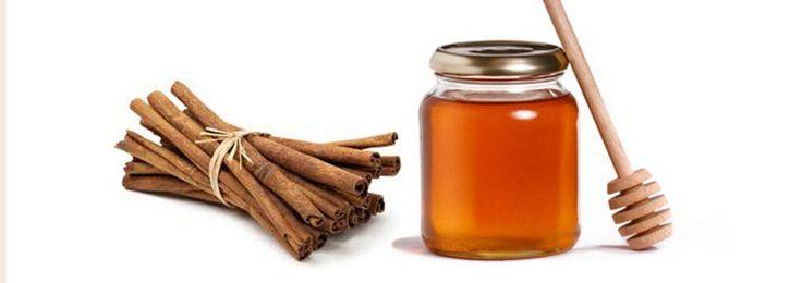 Honig Als Heilmittel