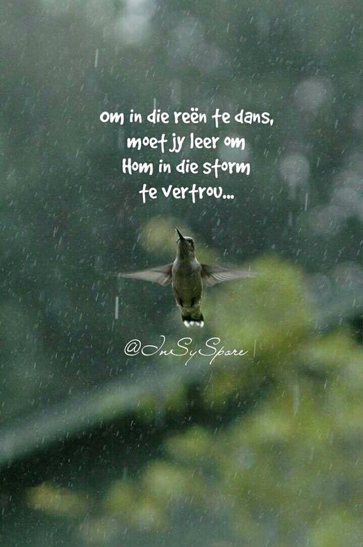 Um im Regen zu tanzen mußt Du ihm im Sturm vertrauen