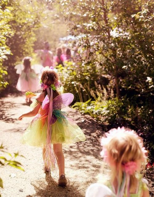 forest fairy fun