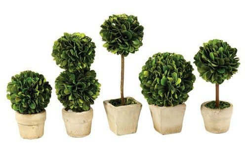 Perserved+Greens+Mini+5+Piece+Topiary+Set+-+Wayfair+-+Farmhouse+Home+Office+Accessories