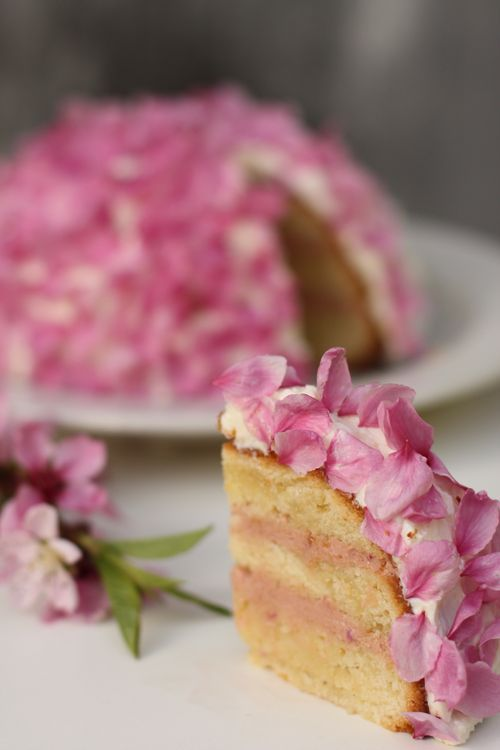 Bitter almond cake with sour cherry filling, coconut almond frosting and cherry blossom petals.