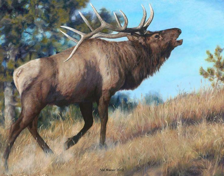 Original Oil Paintings by Val Warner 2