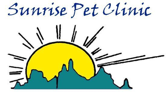Dr. Holly Burgess, DVM integrative vet at Sunrise Pet Clinic in Tucson, Arizona http://sunrisepetclinicaz.com/index.html  http://www.bestcatanddognutrition.com/roger-biduk/list-of-over-900-u-s-holistic-and-integrative-veterinarians/ Roger Biduk